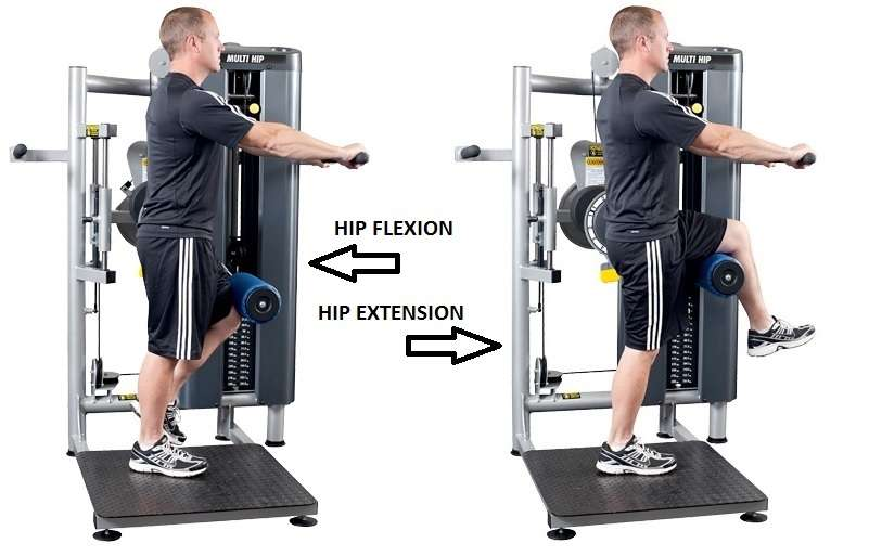 Matrix gym equipment instructions
