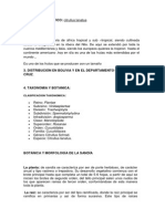 Manual cultivo de sandia pdf